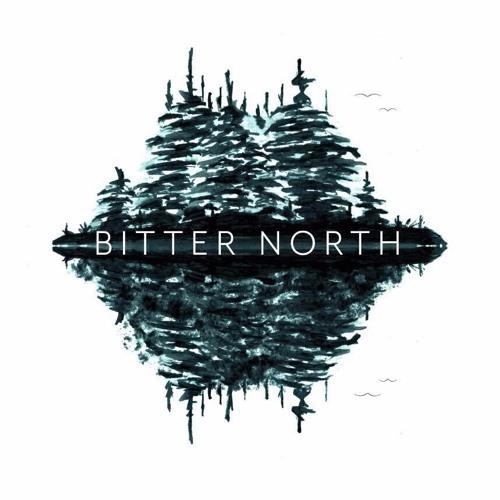 Bitter North's avatar