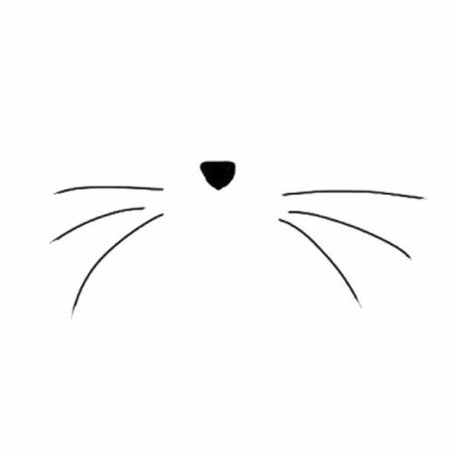 Siana Rudolph's avatar