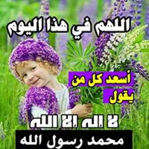 الشيخ الامين في حله's avatar