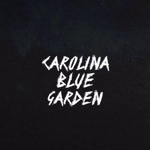 CAROLINA BLUE GARDEN's avatar