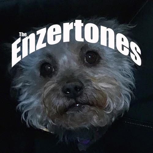 The Enzertones's avatar