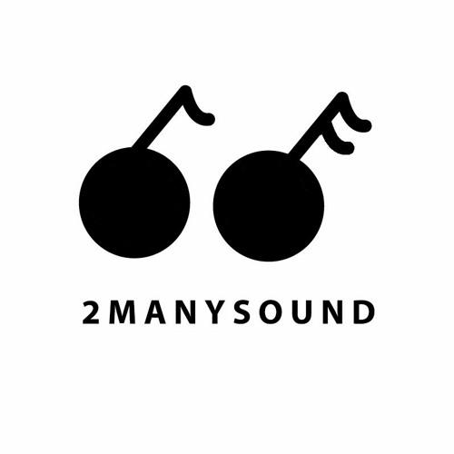 2MANYSOUND's avatar