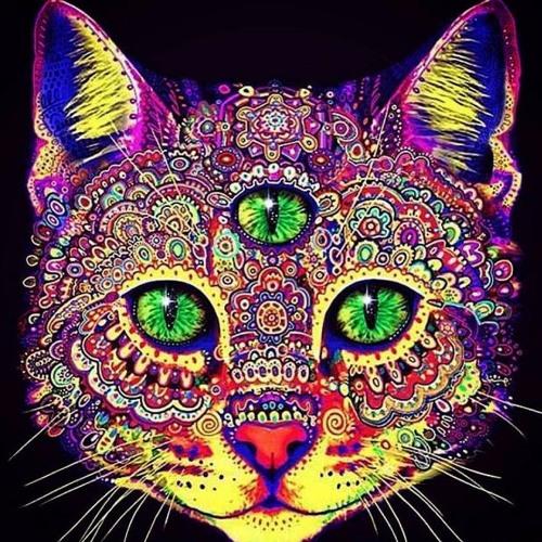 Liloo Luck's avatar