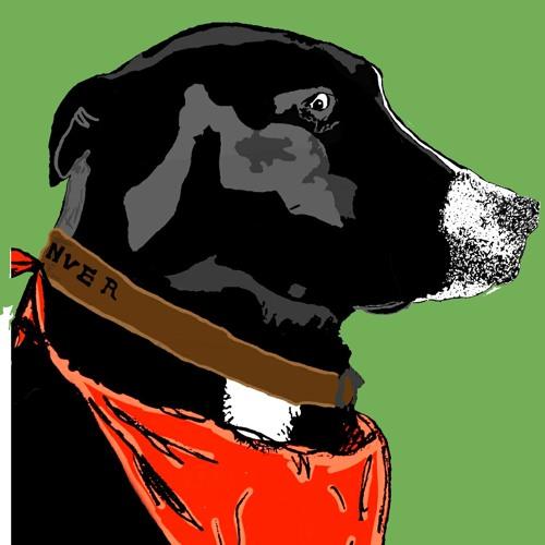 ovel's avatar