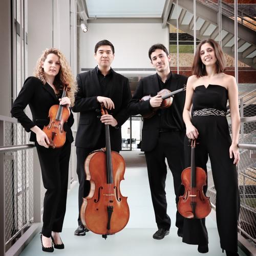 Vera Quartet's avatar