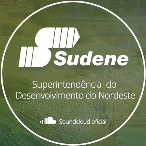 Sudene's avatar