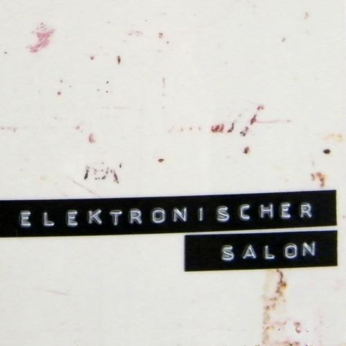 elektronischer salon's avatar