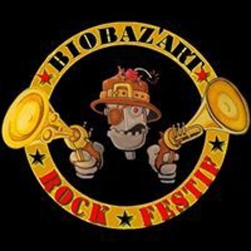 biobaz'art officiel's avatar