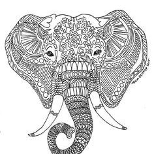 Elephant Repost's avatar