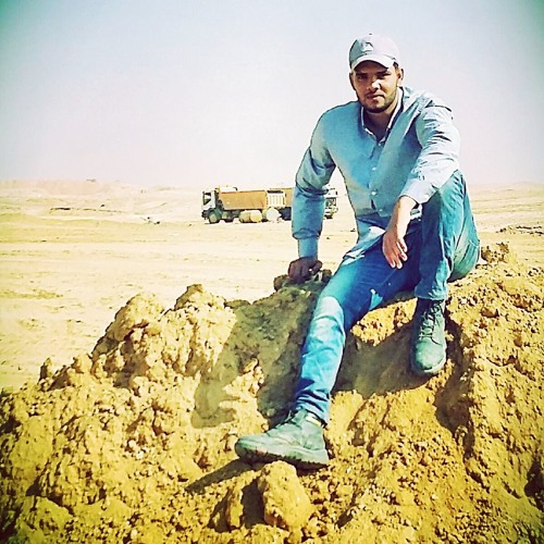Mahmoud El Ayady's avatar