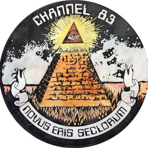 Paralon Security's avatar