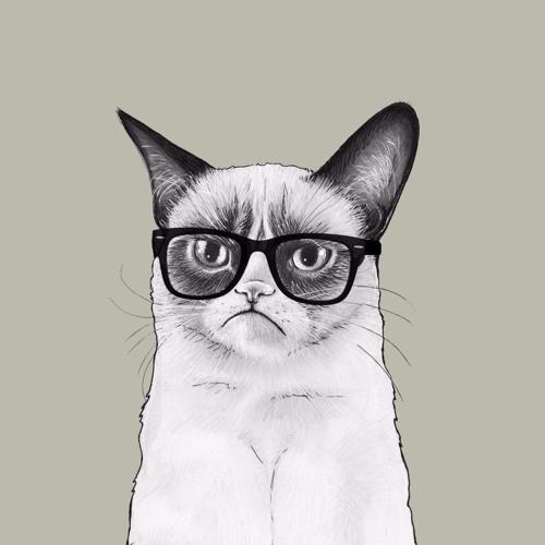 Grumpy Cat's avatar