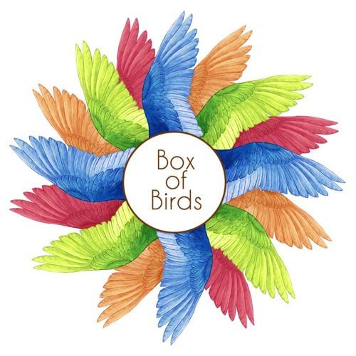Box Of Birds's avatar