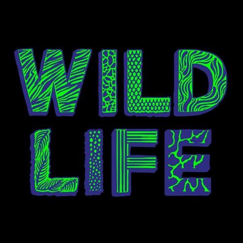 WILD LIFE FESTIVAL's avatar