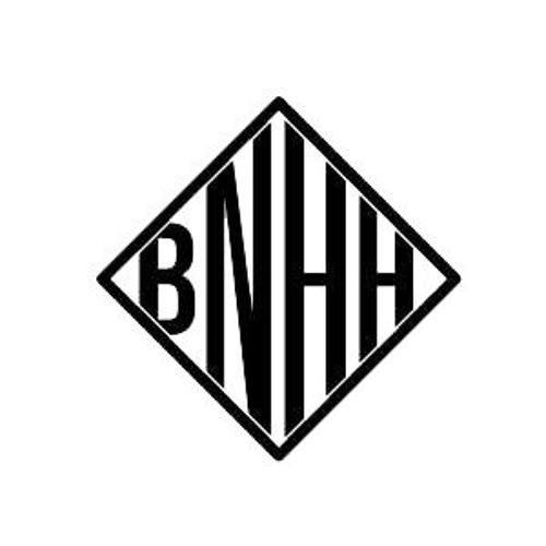 BNHH_'s avatar