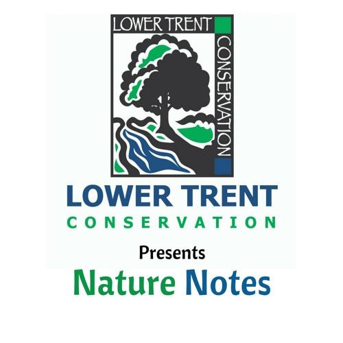 Lower Trent Conservation's avatar