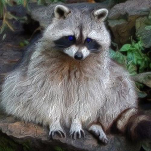 Wrong Reasly's avatar