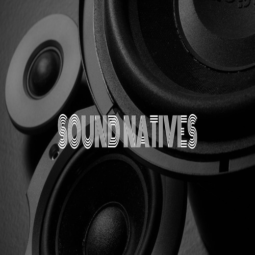 SOUND NATIVES (Official Cloud)'s avatar