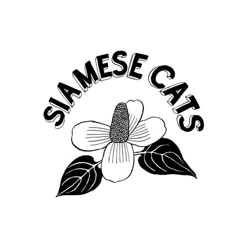 Siamese Cats シャムキャッツ's avatar