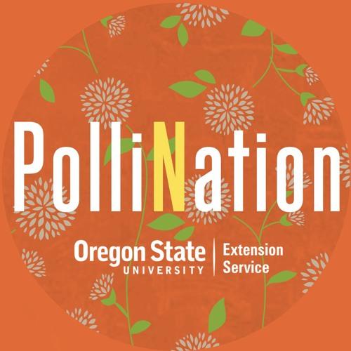 PolliNation's avatar