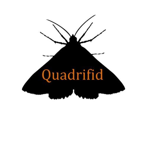 Quadrifid's avatar