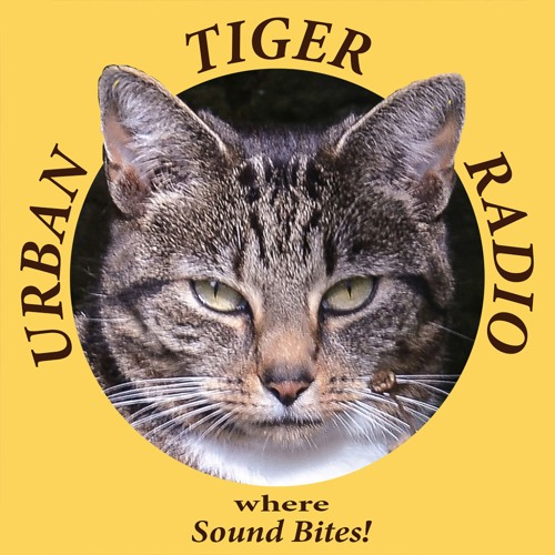 Urban Tiger Radio's avatar