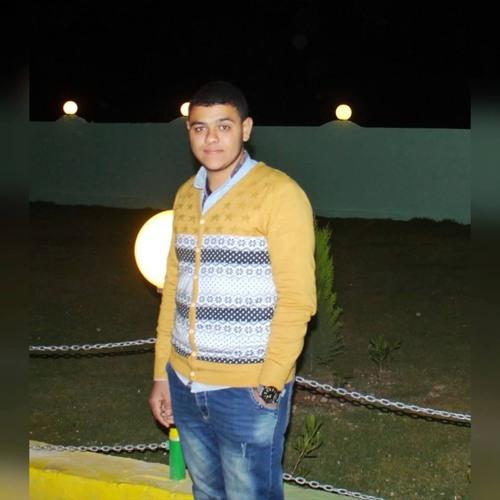 Abdallah Madboully's avatar