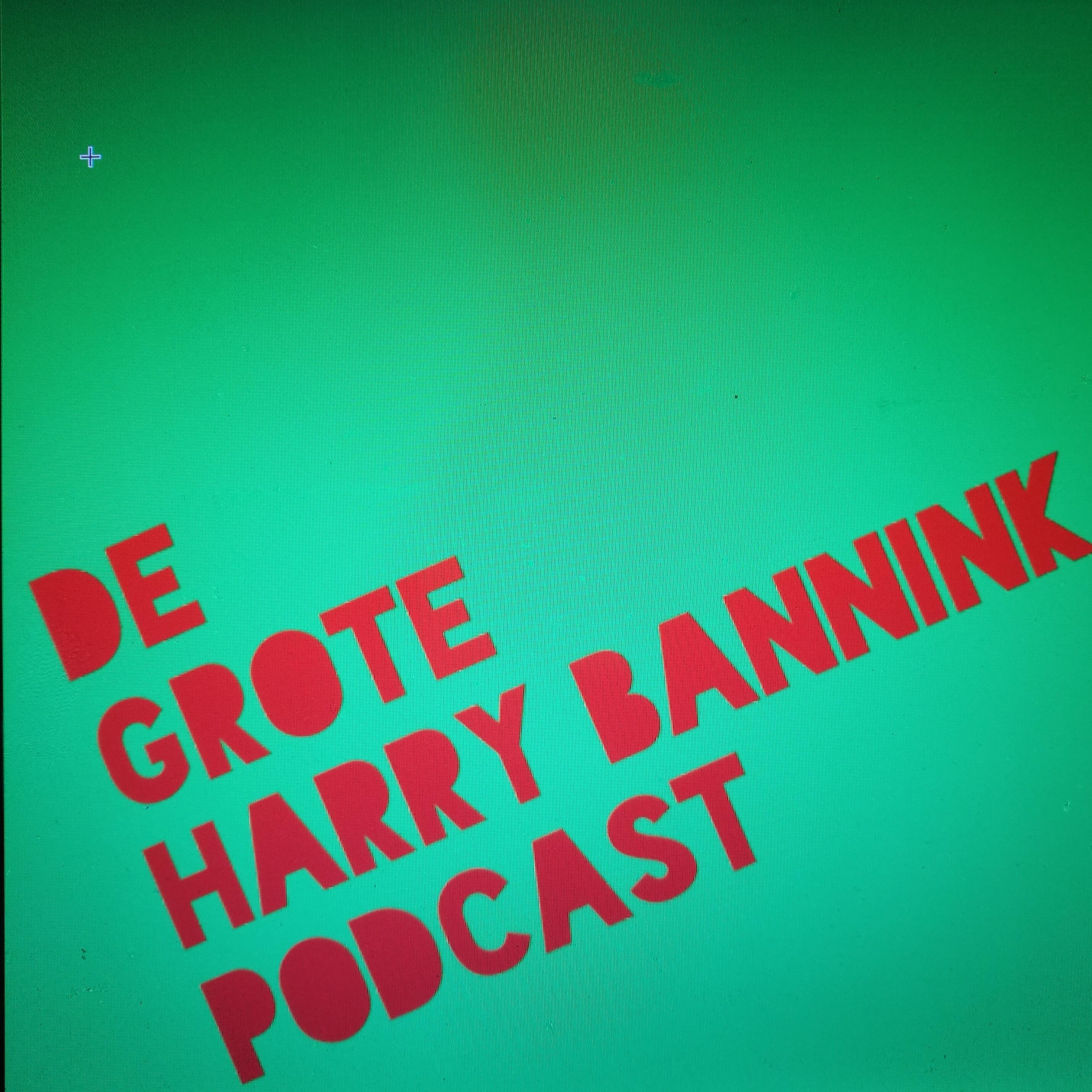 De Grote Harry Bannink Podcast logo