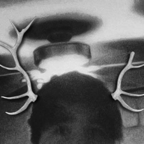 Deer Deity's avatar