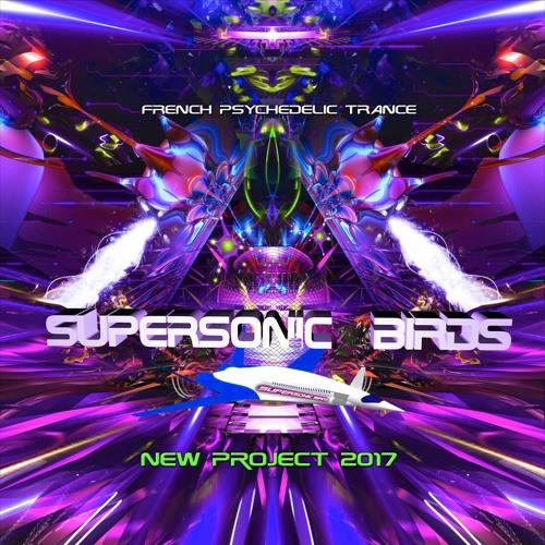 supersonic birds's avatar