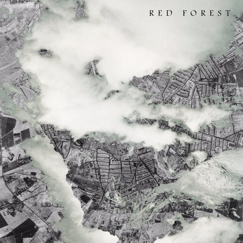RED FOREST's avatar