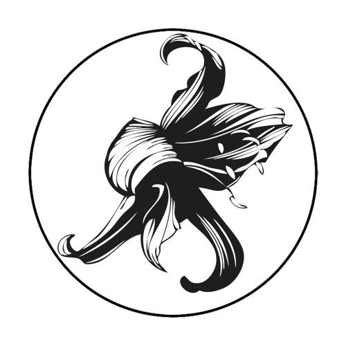 DeepRAW's avatar
