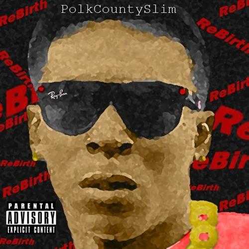 PolkCountySlim's avatar