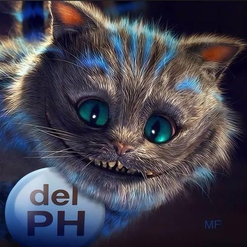 El gato del PH's avatar