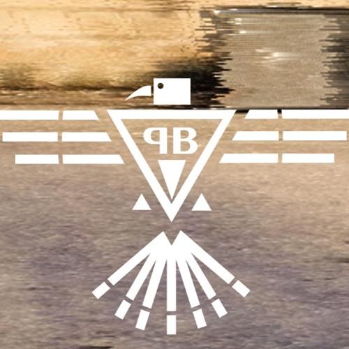 Plagu und Basstölpel's avatar