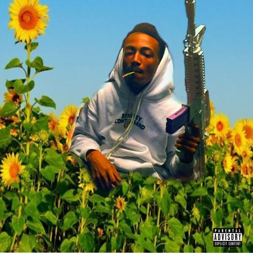 lil sunshine acid's avatar