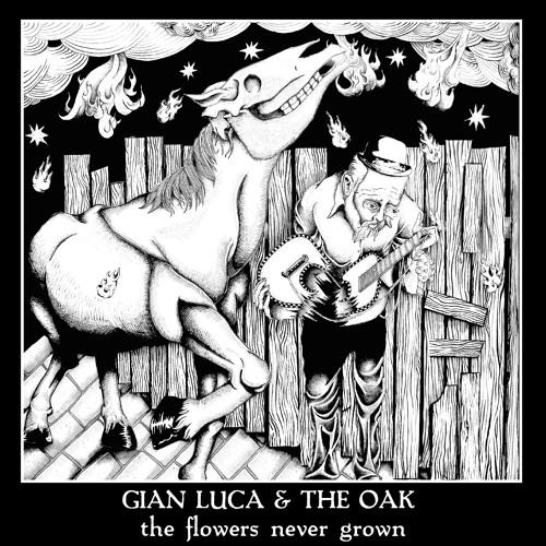 Gian Luca & The Oak's avatar
