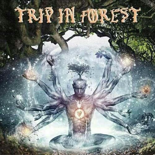 tripinforest's avatar