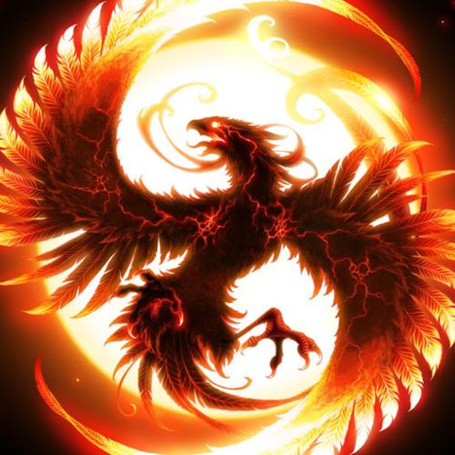 kaido503's avatar