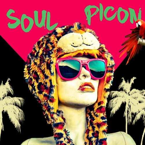 SOUL PICÓN's avatar