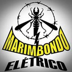 Marimbondo Elétrico