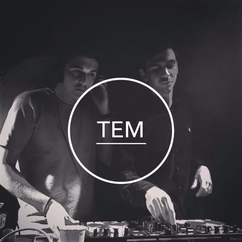 TEM's avatar