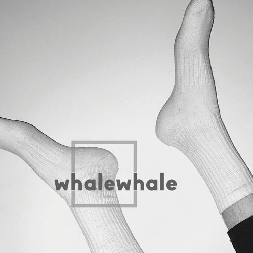 whalewhale's avatar