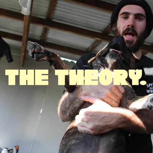 THE THEORY.'s avatar