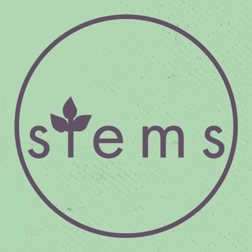 stems collective's avatar