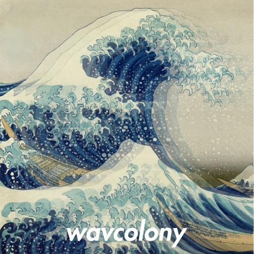 wav.colony's avatar