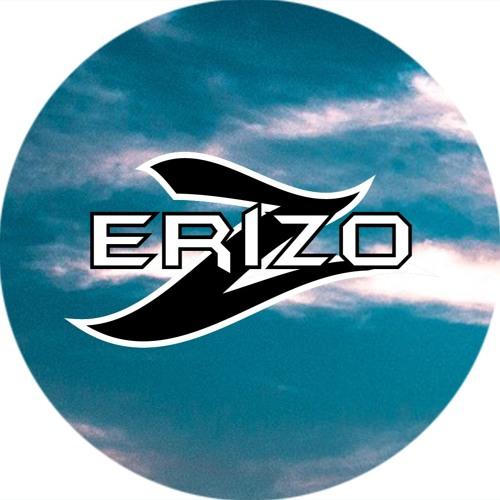 Erizo's avatar