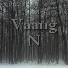 Vaang N.