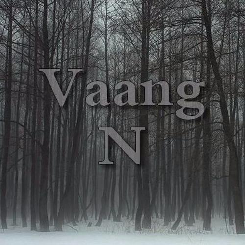 Vaang N.'s avatar