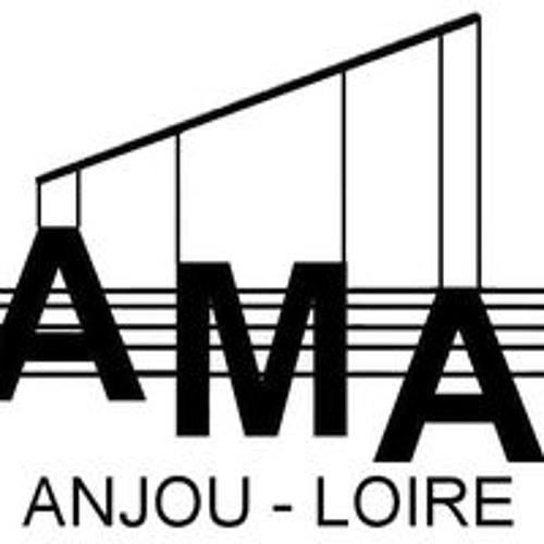 AMAanjouloire's avatar